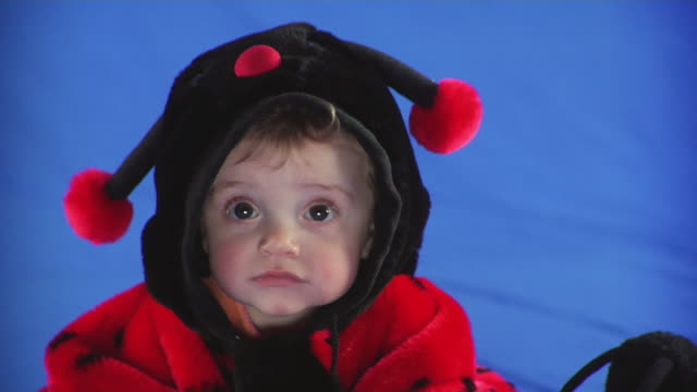 CU Studio portrait of baby girl (6-11 months) in ladybug costume on blue screen