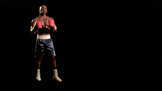 slo mo, ws, studio portrait of boxer, los angeles, california, usa - full length stock videos & royalty-free footage