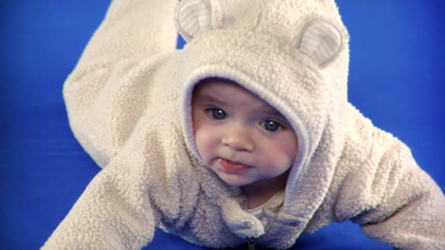 cu studio shot of baby boy (2-5 months) in animal costume on blue screen - kelly mason videos stock videos & royalty-free footage