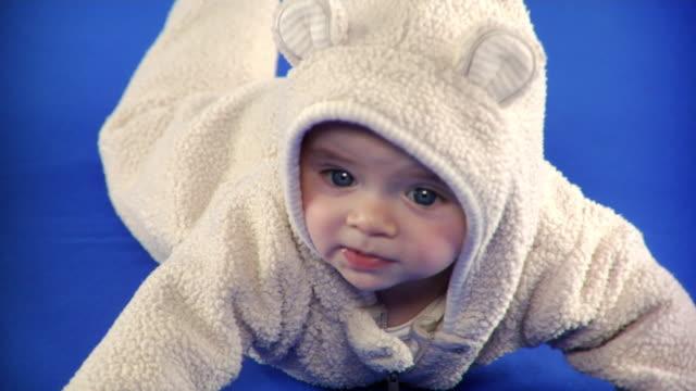 CU Studio shot of baby boy (2-5 months) in animal costume on blue screen