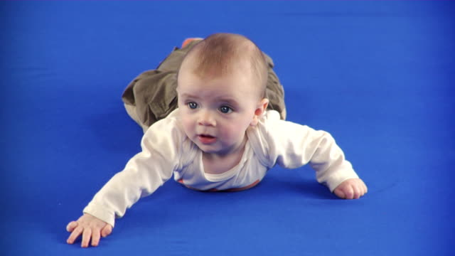 vídeos de stock, filmes e b-roll de ms studio shot of baby boy (6-11 months) lying on front on blue screen - 6 11 meses
