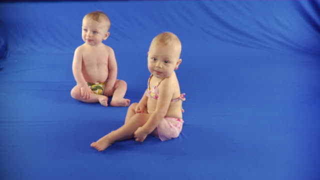 vídeos de stock, filmes e b-roll de ws studio shot of baby girl and baby boy (6-11 months) on blue screen - kelly mason videos
