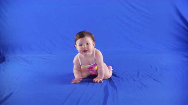 ws studio shot of baby girl (6-11 months) in bathing suit crawling on blue screen - kelly mason videos stock videos & royalty-free footage