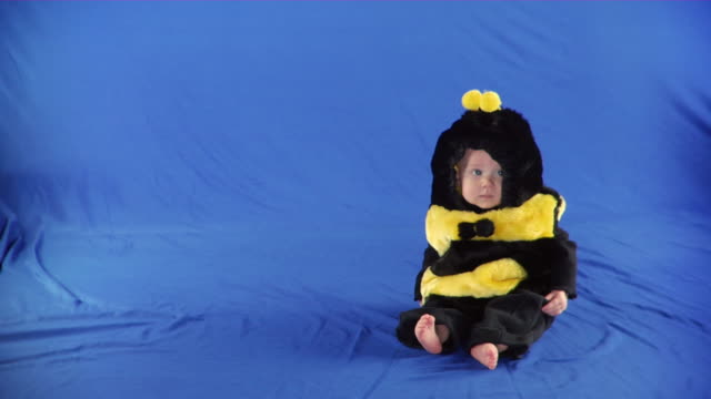 WS Studio shot of baby girl (6-11 months) in bee costume on blue screen