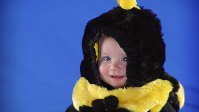 cu studio shot of baby girl (6-11 months) in bee costume on blue screen - kelly mason videos stock videos & royalty-free footage