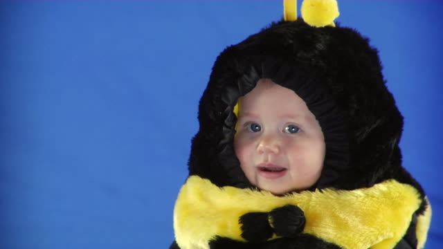 CU Studio shot of baby girl (6-11 months) in bee costume on blue screen