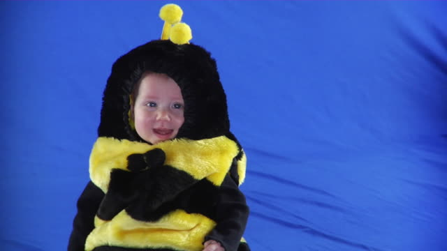 MS PAN Studio shot of baby girl (6-11 months) in bee costume on blue screen