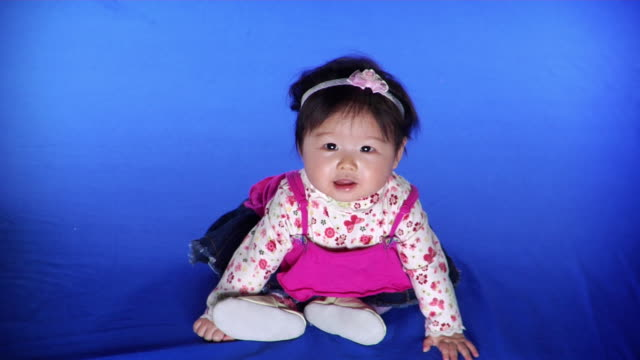ws studio shot of baby girl (6-11 months) on blue screen - 6 11 months stock videos & royalty-free footage