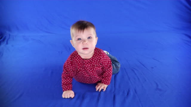 ws studio shot of baby girl (12-17 months) on blue screen - kelly mason videos stock videos & royalty-free footage