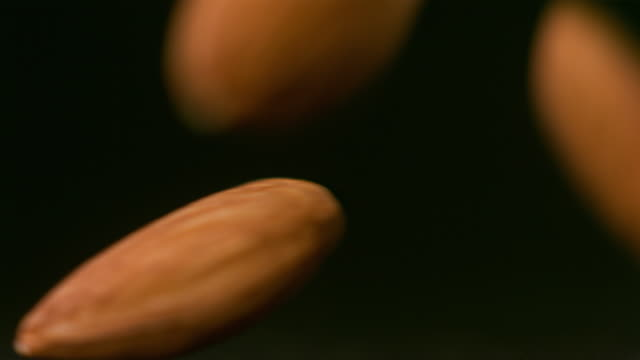 vídeos de stock e filmes b-roll de slo mo ecu studio shot of falling almonds - fruto seco