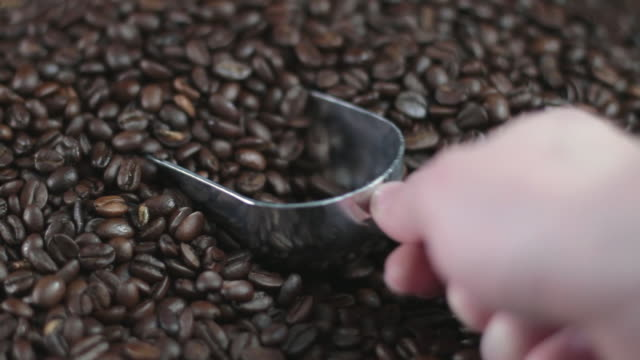 cu studio shot of hand scooping coffee beans - serving scoop stock videos & royalty-free footage