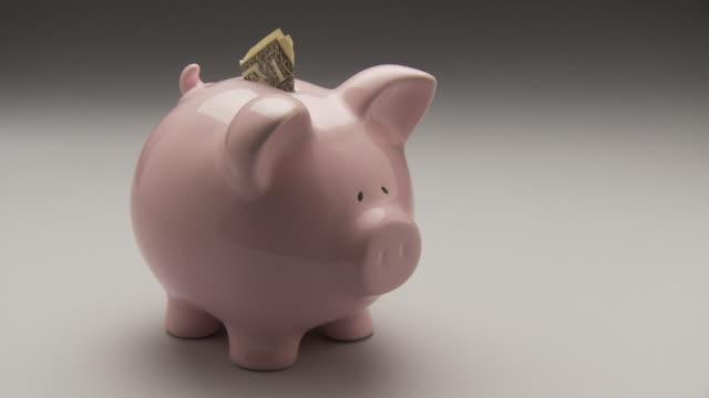 vidéos et rushes de ms, pan, studio shot of pink piggy bank with one dollar bill - tirelire