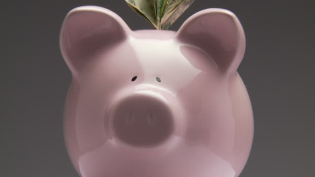 cu, zo, ms, studio shot of pink piggy bank with one dollar bills rotating - saving up for a rainy day stock videos and b-roll footage