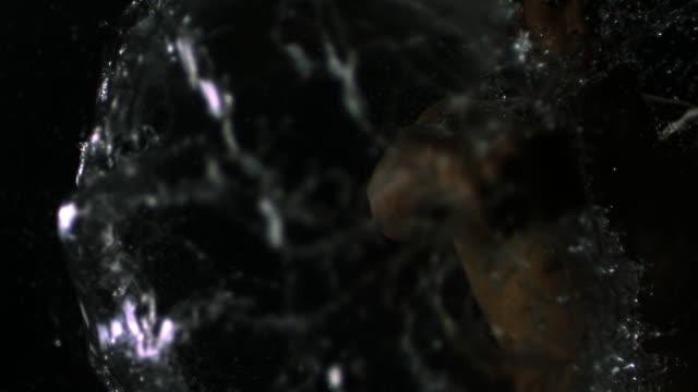 slo mo ms studio shot of shirtless man punching and smashing water balloon against black background - punching stock videos & royalty-free footage