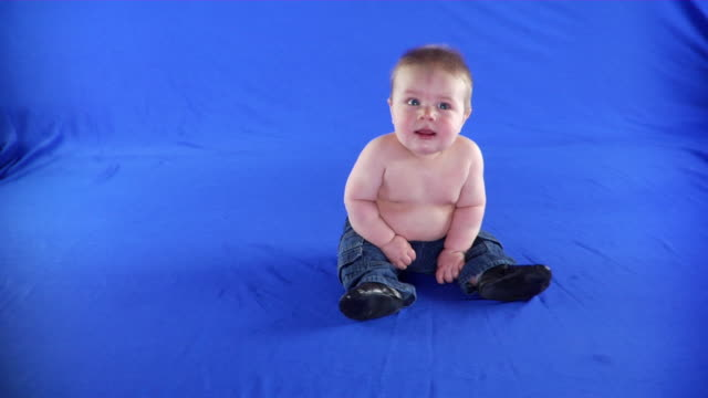 vídeos de stock e filmes b-roll de ws studio shot of smiling baby boy (6-11 months) on blue screen - full length