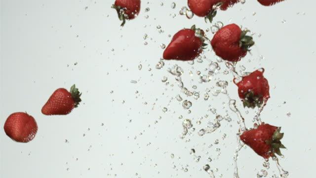 vídeos y material grabado en eventos de stock de slo mo ms studio shot of water drops and strawberries falling against white background - fresa