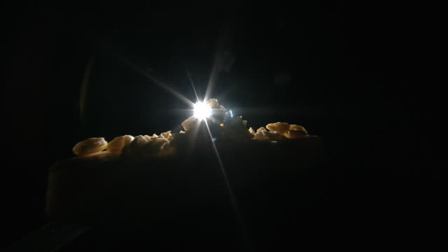 studio shot zooming in on back lit pieces of cheese. - cheese stock videos & royalty-free footage