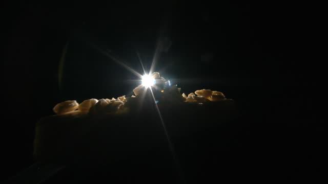 vídeos y material grabado en eventos de stock de studio shot zooming in on back lit pieces of cheese. - queso