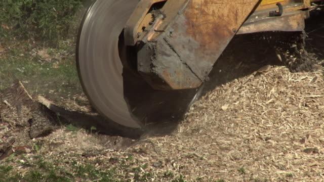 vídeos y material grabado en eventos de stock de cu zo ms stump grinder chewing up stump of tree, ann arbor, michigan, usa - ann arbor