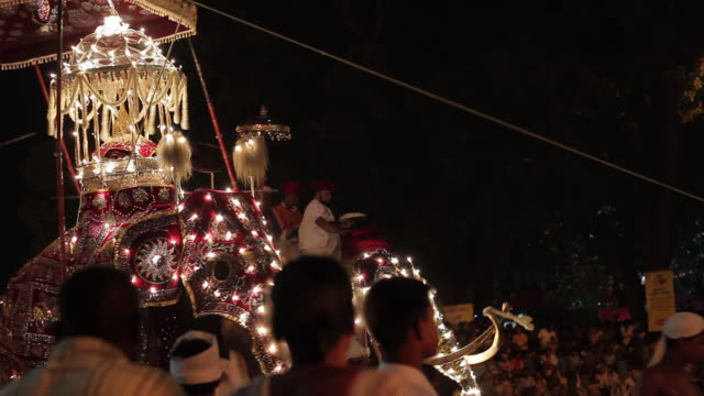 ms stunning elephants carrying 'sacred tooth relic' parade in buddhist festival or procession 'esala perahera' (festival of tooth) audio / kandy, central province, sri lanka - sri lankan culture stock videos and b-roll footage