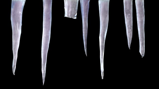 stylised icicles with luma matte 1 - thorn stock videos & royalty-free footage