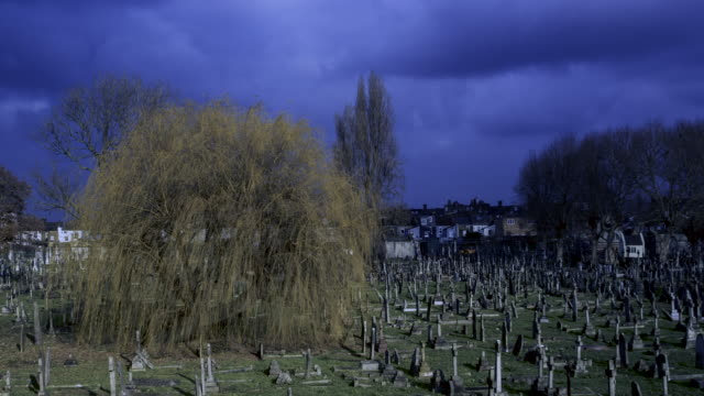 stylised time lapse graveyard at night - trauerweide stock-videos und b-roll-filmmaterial