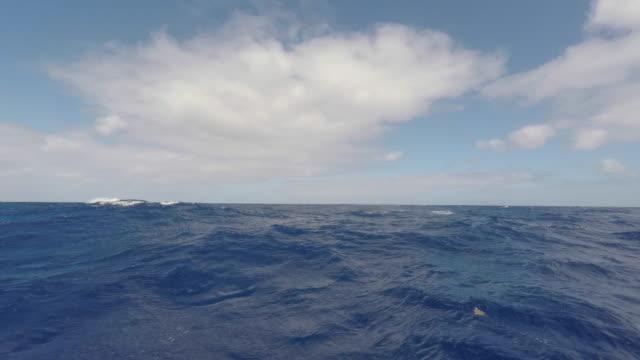 vídeos de stock e filmes b-roll de subjective view of the stormy sea - territórios ultramarinos franceses