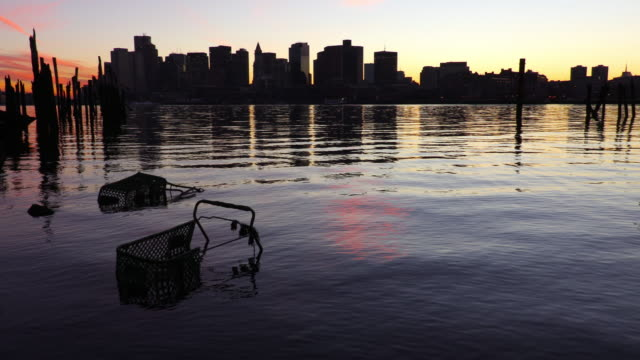 submerged shopping carts in the boston harbor - shopping trolley stock videos and b-roll footage