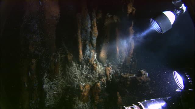 submersible illuminates rimicaris shrimps on black smoker deep sea vent, mid atlantic ridge - deep stock videos & royalty-free footage