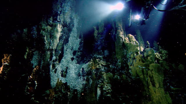 Submersible illuminates Rimicaris shrimps on black smoker deep sea vent, Mid Atlantic Ridge