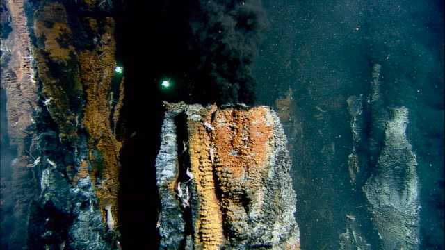 submersible lights illuminate black smoker deep sea vent on ocean floor, mid atlantic ridge - sea life stock videos & royalty-free footage