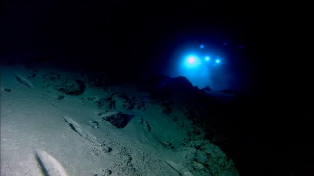 submersible shines lights onto deep sea floor, mid atlantic ridge - submarine stock videos and b-roll footage