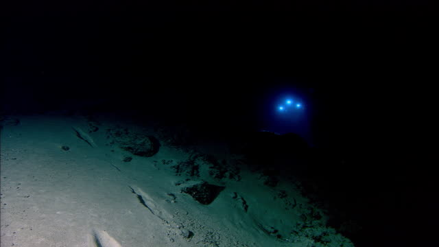 submersible shines lights onto deep sea floor, mid atlantic ridge - seabed stock videos & royalty-free footage