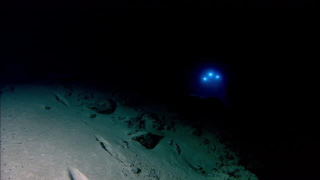 submersible shines lights onto deep sea floor, mid atlantic ridge - sottomarino mezzo di trasporto marittimo video stock e b–roll