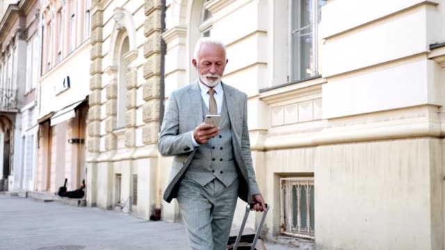 Successful businessman with a mobile phone and a suitcase