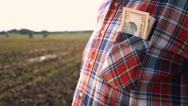 ds successful farmer with pocket full of money - pocket stock videos & royalty-free footage