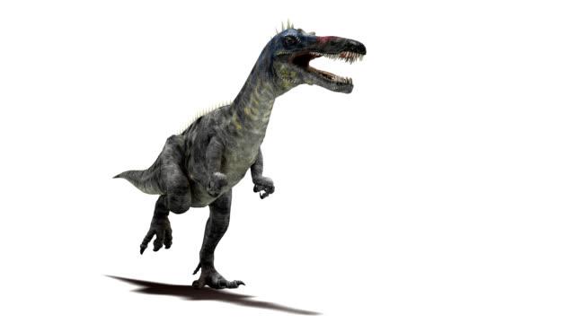 suchomimus dinosaur running - 恐竜点の映像素材/bロール