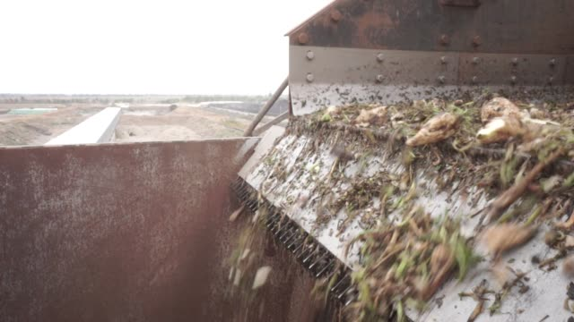 stockvideo's en b-roll-footage met sugar beets move off a conveyor before a washing process at the edf man ltd refinery in nikolaev ukraine on friday sept 22 2017 - suiker