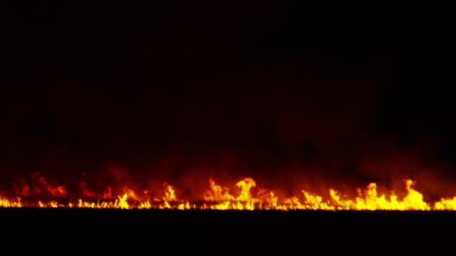 Sugarcane fire, Australia