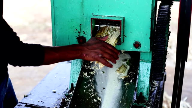 sugarcane juice - sugar cane stock videos and b-roll footage