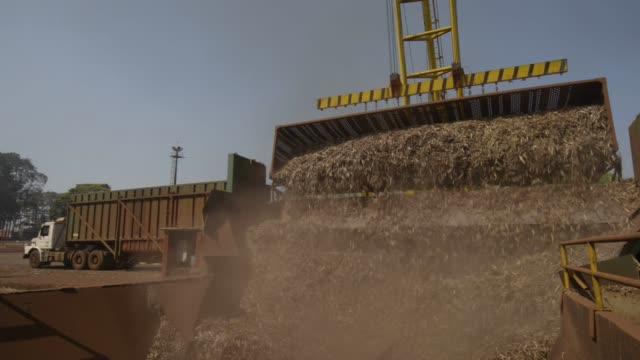 sugarcane stalks are unloaded to be crushed at biosevs santa elisas mill sertaozinho state of sao paulo brazil on thursday september 24th 2015 shots... - 砂糖点の映像素材/bロール