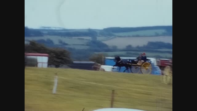 sulky horse trot race - brown stock videos & royalty-free footage
