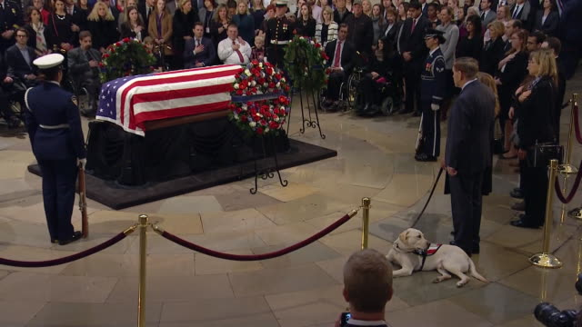 sully, george h.w. bushõs service dog, pays his respects to the former president in the united states capitol rotunda on december 4, 2018. - 正装安置点の映像素材/bロール