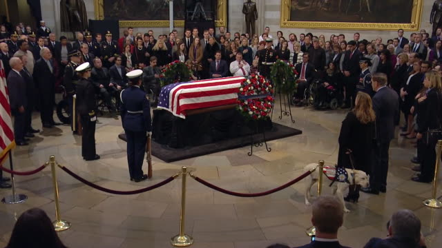 sully, george h.w. bushõs service dog, pays his respects to the former president in the united states capitol rotunda on december 4, 2018. - rotunda stock videos & royalty-free footage