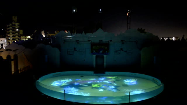 suma aqualife park a major aquarium in western japan kicked off a new winter night event featuring threedimensional vision projected on to a large... - sea life park stock videos & royalty-free footage