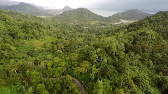 Sumatran Rainforest and Trans-Sumatran Highway, Aerial, Backward