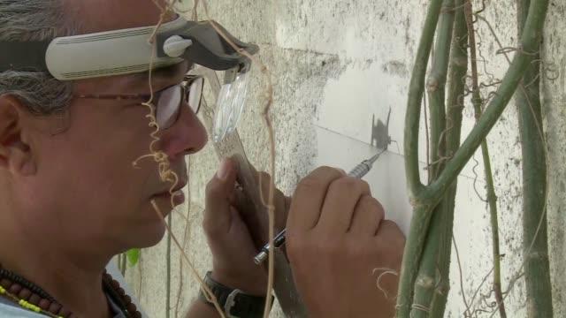 vídeos de stock, filmes e b-roll de sumergido en un edificio en ruinas el pintor cubano glexis novoa adelanta los dibujos que presentara en la bienal de la habana con los que pretende... - pintor artista