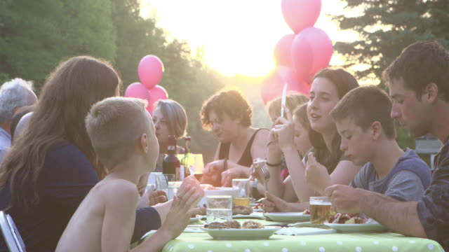 summer bbq large family celebration nature - large family stock videos & royalty-free footage