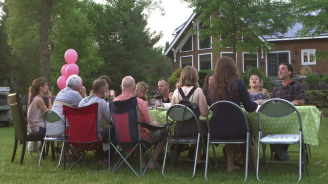 summer bbq large family celebration nature - large family stock videos and b-roll footage