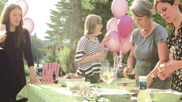 summer bbq large family celebration nature - multi generation family stock videos & royalty-free footage